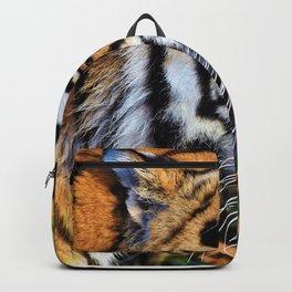 Predator | Predateur Backpack