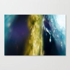 Bright 2 Canvas Print