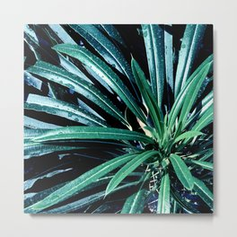 Starburst of Leaves In Blue And Green Hues Metal Print