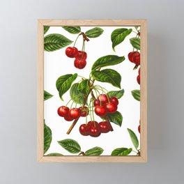 Vintage Botanical Cherries Print on White Framed Mini Art Print