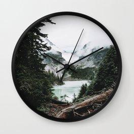 Into the Wild 14 / Washington Wall Clock