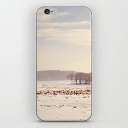 Snowy valley. iPhone Skin