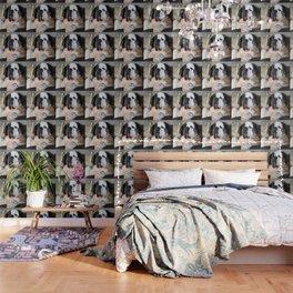 Funny St Berdard dog Wallpaper