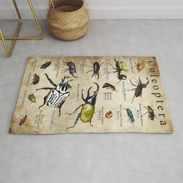 Beetles (Coleoptera) of the World Rug