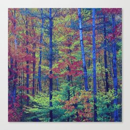 Forest - with exaggerated colors Canvas Print