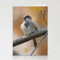 sparrow Stationery Cards featuring Sparrow by Tammi Hofstetter