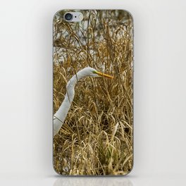 Great Egret Among the Rushes iPhone Skin