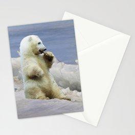 Cute Polar Bear Cub & Arctic Ice Stationery Cards