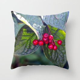 Poison or not : Red berries Throw Pillow