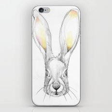 Jack Rabbit iPhone & iPod Skin