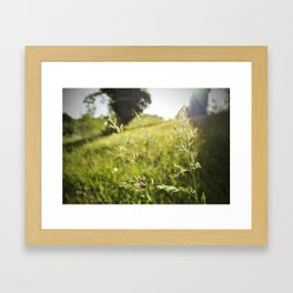 invincible. Framed Art Print