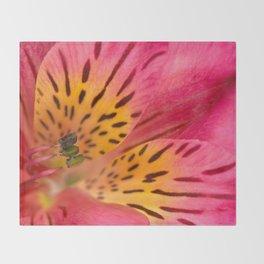 Peruvian Lily Macro Throw Blanket