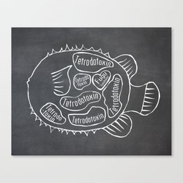 Fugu Butcher Diagram (Blowfish Meat Chart) Canvas Print