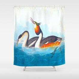 Crested Grebe James Audubon Vintage Scientific Illustration American Birds Shower Curtain