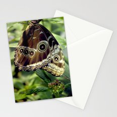Butterfly Hang Stationery Cards