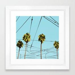 Urban Palms Framed Art Print