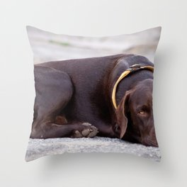the hound dog Throw Pillow