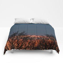 Closure Comforters