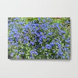 Field of Blue Metal Print