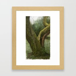 Moss covered tree in Issaquah, WA Framed Art Print
