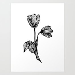 black and white flower drawing Art Print