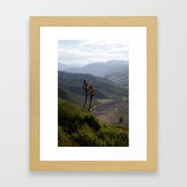 Baja: Overlooking Framed Art Print