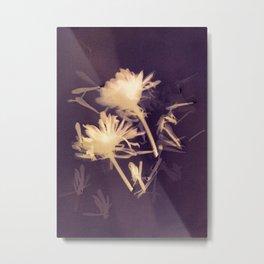 Lumen S3 VE2 Metal Print