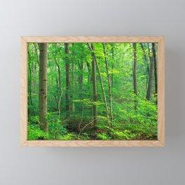 Forest 7 Framed Mini Art Print