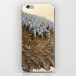 Sunflower Seed Harvest iPhone Skin