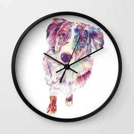 Multicolored Australian Shepherd red merle herding dog Wall Clock