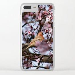 Spring Blossoms - Male House Finch Clear iPhone Case