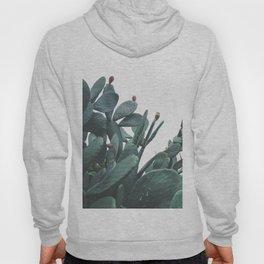 Fruit Cactus Desert Hoody