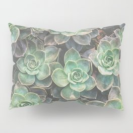 Succulents 2 Pillow Sham