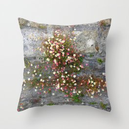 Daisies Wall Throw Pillow