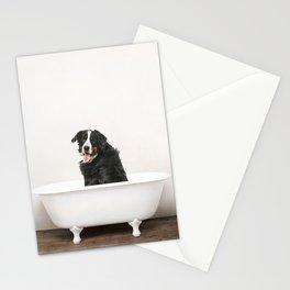 Bernese Mountain Dog in Vintage Bathtub Stationery Cards
