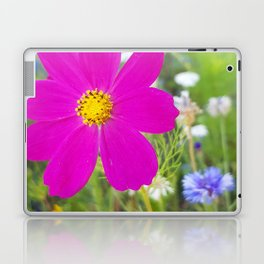 Flowers Go Wild in Wimbledon 5 - Cosmos the bold Laptop & iPad Skin