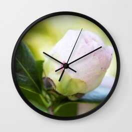 Strawberry Blonde Camellia from Bud to Bloom Wall Clock