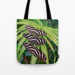 Zebra longwing butterflies Tote Bag