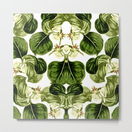 Botany Leaf Symmetry Metal Print