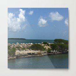 Chilling on the Water Metal Print