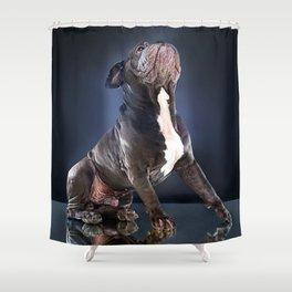 Super Pets Series 1 - Super Liam Shower Curtain