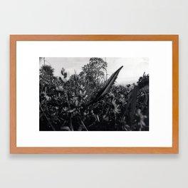 Happy Wondering Framed Art Print