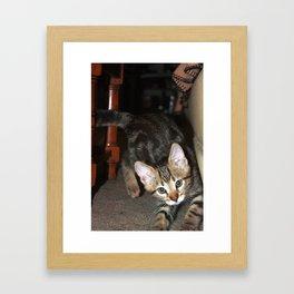 May B. Minit 03 Framed Art Print