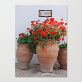 Via Panella Canvas Print
