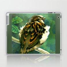 Sparrow in Puriri Tree Laptop & iPad Skin