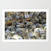 Honey Bees Art Print