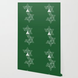 Green Unrolled D20 Wallpaper
