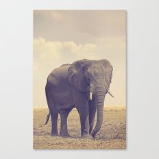 The Biggest Elephant in Botswana Canvas Print