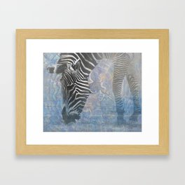 Zebra in the Mist Framed Art Print