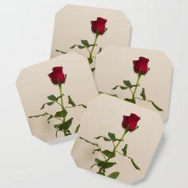 Single red rose Coaster